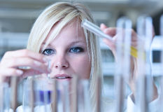 Emale researcher carrying out experiments in a lab Royalty Free Stock Photo