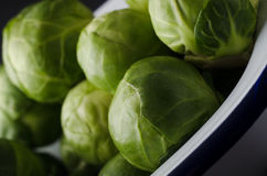 Emaljplåt som fylls med lövrika gröna Brussel - groddar Royaltyfri Fotografi