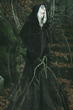 Emanation of dark powers from a forest witch Stock Photography
