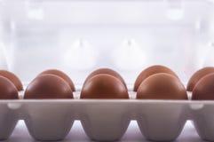Embalaje de huevos fotos de archivo libres de regalías