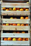 Embalajes de madera con las naranjas Imágenes de archivo libres de regalías
