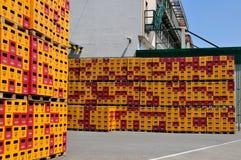 Embalajes vacíos de cerveza, Starobrno Fotos de archivo