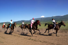 emballage de nomade de chevaux de bayga traditionnel Photographie stock