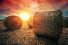 Emballierter Hay Rolls bei Sonnenuntergang Stockbilder