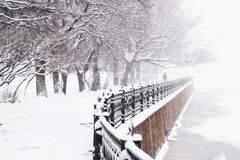 Embankment. The Kronverk embankment at snowfall in Saint Petersburg, Russia royalty free stock photography