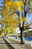 Embankment Autumn Colors Royalty Free Stock Photo