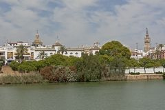 Embankment of Guadalquivir river in Seville. Green quay of Guadalquivir river in downtown seville, with Giralda tower. Andalucia, Spain stock images