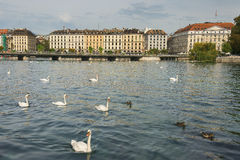 Embankment of lake Geneva, Geneva, Switzerland Royalty Free Stock Images