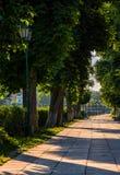Embankment with lantern at sunrise. Lantern among chestnut trees. long embankment at sunrise Stock Photo