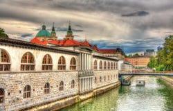 Embankment in Ljubljana, Slovenia Royalty Free Stock Photos