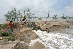 Embankment Problem in Sundarban Royalty Free Stock Images