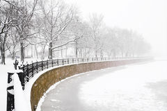 Embankment at snowfall. Kronverk embankment and Kamennostrovski Prospekt at snowfall in Saint Petersburg, Russia royalty free stock photo