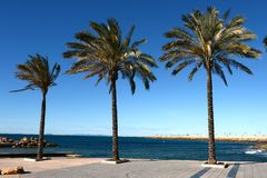 Embankment in Torrevieja Royalty Free Stock Images