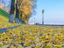 The embankment of the Volga river in Yaroslavl royalty free stock photography