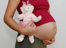 Embarazado Fotos de archivo libres de regalías
