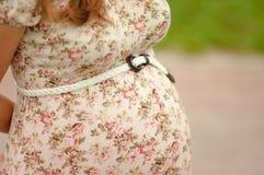 Embarazo Imagen de archivo