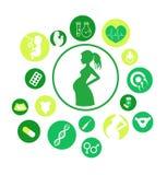 Embarazo e iconos recién nacidos del bebé fijados Iconos del vector de la medicina y del embarazo fijados Parto y maternidad Info stock de ilustración