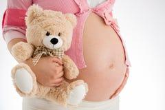 Embarazo Mujer embarazada que sostiene el juguete en su mano, st del oso de peluche Imágenes de archivo libres de regalías