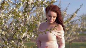 Embarazo, vientre de caricia de la madre futura feliz con el bebé futuro durante paseo en huerta floreciente almacen de metraje de vídeo