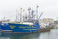Embarcação de pesca Luzitano Imagem de Stock Royalty Free
