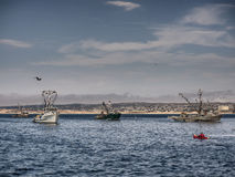 Embarcações de pesca no porto de Monterey, Califórnia imagens de stock royalty free