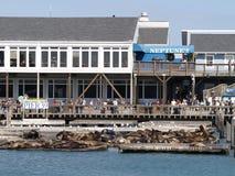 Embarcadero 39 en San Francisco Bay Imagen de archivo