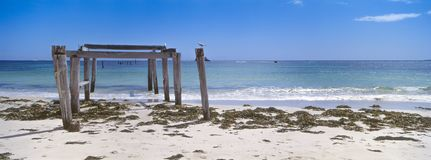 Embarcadero abandonado en la bahía de Hamelin, Australia occidental fotografía de archivo