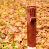 Embarcadero coloreado rojo con el backgrond del follaje del otoño Fotografía de archivo libre de regalías