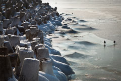 Embarcadero de congelación hecho del concreto Fotografía de archivo libre de regalías