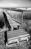 Embarcadero de madera blanco y negro. Foto de archivo