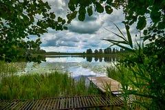Embarcadero de madera en la orilla del lago entre las cañas Foto de archivo