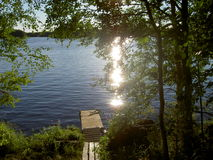 Embarcadero de madera viejo por un lago en maderas sombrías Imagen de archivo