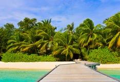 Embarcadero, playa y selva fotos de archivo libres de regalías