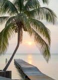 Embarcadero tropical de la salida del sol imagen de archivo
