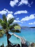 Embarcadero y palma en la isla de Tortola foto de archivo