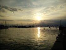Embarque de la paleta de la puesta del sol Imagen de archivo libre de regalías