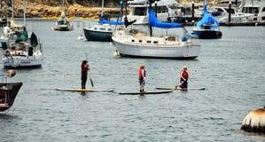 Embarque de la paleta en el puerto deportivo de Monterey Fotografía de archivo libre de regalías