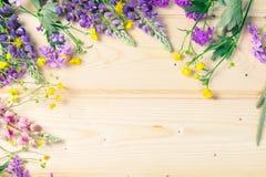 Embarque o fundo para o projeto em um quadro das flores de florescência do verão O lugar para uma inscrição Fundo claro foto de stock royalty free