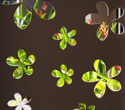 Embarquez la coupe de mur ou percé en fleurs minimales de style formez en tant que source lumineuse naturelle Photographie stock libre de droits