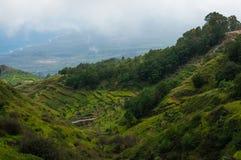 Embeba o ponto de vista do vale verde que conduz ao oceano azul Imagem de Stock