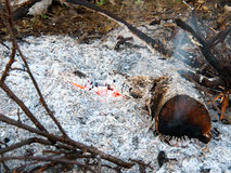 Smoldering coals. Source fire Royalty Free Stock Images
