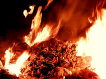 Embers burning in fire at night closeup Royalty Free Stock Image