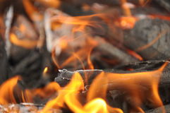 Embers de madeira ardentes com flamas Fotografia de Stock Royalty Free