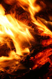 Embers in fire. Macro of hot embers in fire Stock Images