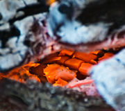 Embers and flames Stock Image