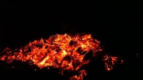 Embers i popióły duży ogień zbiory wideo