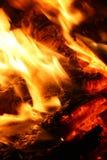 Embers no incêndio Imagens de Stock