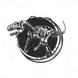 Emblème d'isolement Image libre de droits