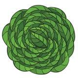 Emblème de griffonnage avec les feuilles vertes Illustration Libre de Droits