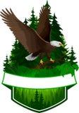 Emblème de région boisée de vecteur avec l'aigle chauve Photographie stock libre de droits